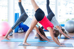 Women doing half downward dog posture. In fitness studio Royalty Free Stock Photos