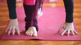 Women doing yoga class in hall stock video