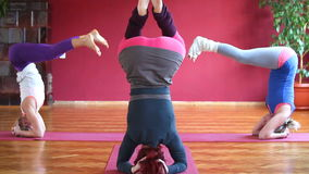 Women doing yoga class in hall stock video footage