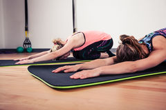 Women doing yoga in gym Stock Images