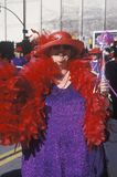 Women in the Doo Dah Parade, Pasadena California Stock Image