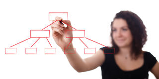 Women drawing diagram, isolated on white Stock Image