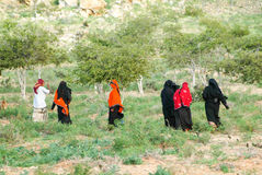 Women dressed in the burqa on the countryside of Socotra stock photos