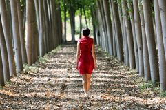Women dressed in red walking in the forest Royalty Free Stock Photo