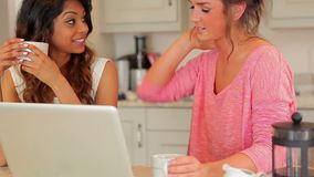 Women drinking coffee and looking at laptop stock video footage