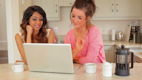 Women drinking coffee while looking at laptop. In kitchen stock video footage