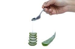 Women drop a fresh cut aloe vera gel isolated Royalty Free Stock Photo