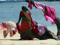 Women drying clothes on a beach. A women drying clothes on a driftwood at Wandoor beach, Port Blair, Andaman and Nicobar Islands, India, Asia Royalty Free Stock Images