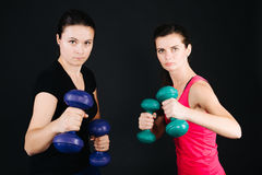 Women with dumbbells. Concentrated women holding dumbbells and posing at studio Royalty Free Stock Photos