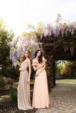 Women  in elegant dresses, posing in blossom spring garden Royalty Free Stock Image