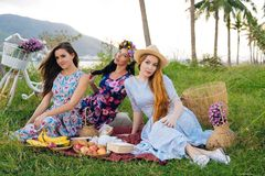 Women enjoying picnic in countryside. Girls on vacation spend time together Stock Photography