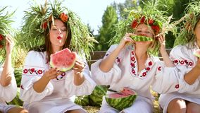 Women in ethnic costumes eating watermelons outside. Pan of cheerful women in ethnic dresses and floral circlets sitting in trailer and eating watermelons. Four stock video