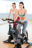 Women on exercise bikes. Royalty Free Stock Photos