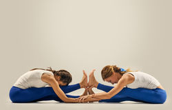 Women exercise pair yoga. Seated Forward Bend Stock Image