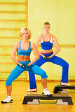 Women exercising Royalty Free Stock Images
