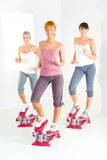 Women exercising on stepping machine. Group of women doing exercise on stepper. They're looking at camera. Front view Stock Image