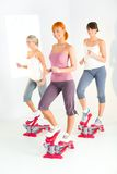 Women exercising on stepping machine. Group of young women doing exercise on stepper Royalty Free Stock Photography