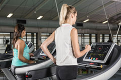 Women exercising on a treadmill Royalty Free Stock Image