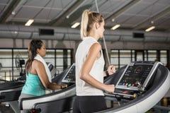 Women exercising on treadmills Stock Image