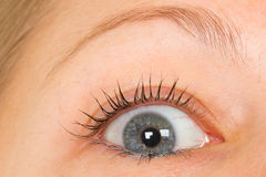 Women eye, close-up, blue Stock Images