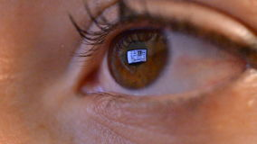 Women eye with reflection of surfing internet at night Royalty Free Stock Image