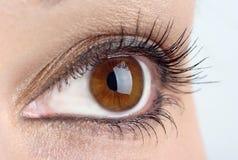 Women eyes Royalty Free Stock Images