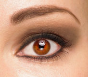 Women eyes. With brown make up stock image