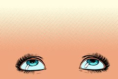 Women eyes look up Royalty Free Illustration