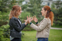 Women face to face having conversation gesticulate with hands. Two smiling women face to face having conversation gesticulate with hands royalty free stock image