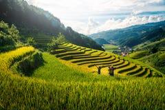 Women farmer and daughter raising arm on Rice fields terraced at sunset in Mu Cang Chai, YenBai, Vietnam
