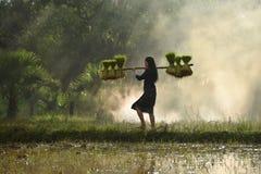Women farmer Stock Photography