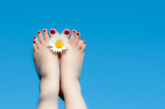 Women feet and flower. On blue sky Royalty Free Stock Photos