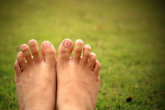 Women feet in the grass. The women feet relex  in the grass Royalty Free Stock Photos