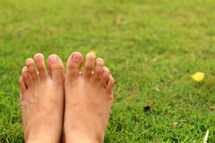Women feet in the grass. The women feet relex  in the grass Royalty Free Stock Photography