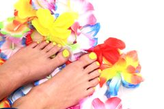 Women feet (pedicure)  with flowers Stock Photos