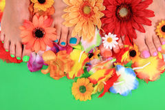 Women feets and flowers (pedicure tbackground) Royalty Free Stock Images
