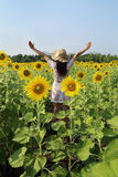 Women in field of sunflowers Stock Photos