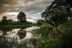 Women fishing Stock Image