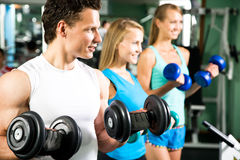 Women with  fitness trainer in the gym Royalty Free Stock Photos