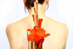 Women with flower Stock Photography