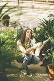 Women in the flower garden Royalty Free Stock Image