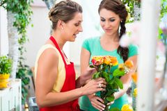 Women in flower store enjoying the roses Royalty Free Stock Image