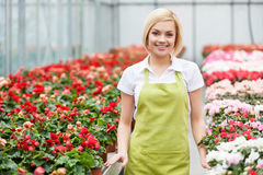Women in flowers. Royalty Free Stock Photos