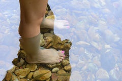 Women foot in nature water Stock Photos
