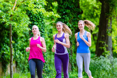 Women in forest running for sport. Three motivated women jogging in green forest royalty free stock image