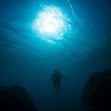 Women free diving. Silhouettes of a young woman free diving in the pacific ocean Royalty Free Stock Images