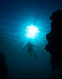 Women free diving. Silhouettes of a young woman free diving in the pacific ocean stock photo