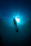 Women free diving. Silhouettes of a young woman free diving in the pacific ocean stock photography