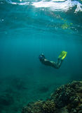 Women free diving. Silhouettes of a young woman free diving in the pacific ocean Stock Images