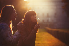 Women freedom and hope. Nature and harmony. Romantic sunset. Two young women taking and blowing a dandelion flower. Warm lighting and intense sunset. Concept of